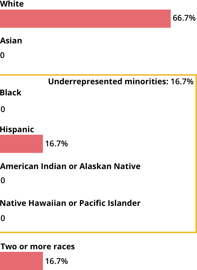 White: 66.7%. Asian: 0. Black: 0. Hispanic: 16.7%. American Indian or Alaskan Native: 0. Native Hawaiian or Pacific Islander: 0. Two or more races: 16.7%.