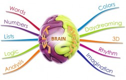 brain-left_right-mind-map