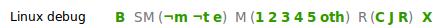 SM (e) build on TBPL
