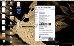 Fennec running on a Linux desktop