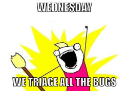 We triage all the bugs