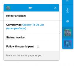 Participant screen