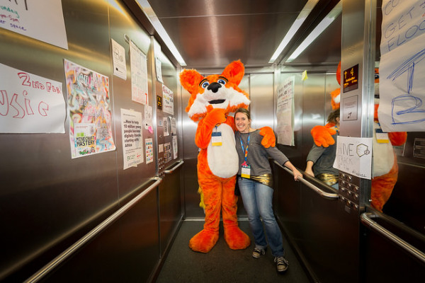 fox-elevator