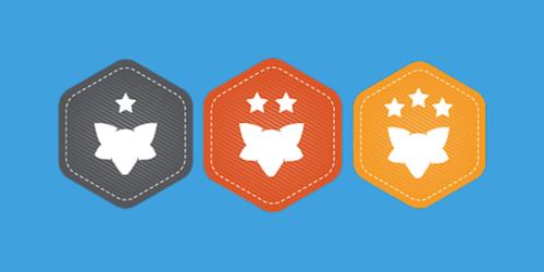 FSA Recognition Badges